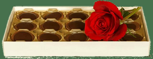 שוקולד ותשוקה ראשית