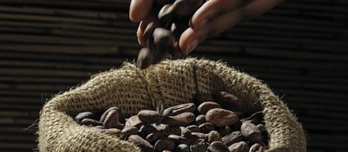 עבודה עם שוקולד