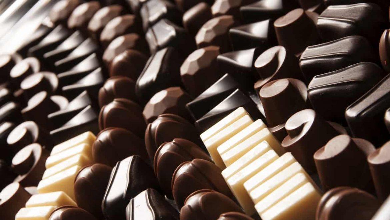 מה נשים מעדיפות שוקולד או דובי